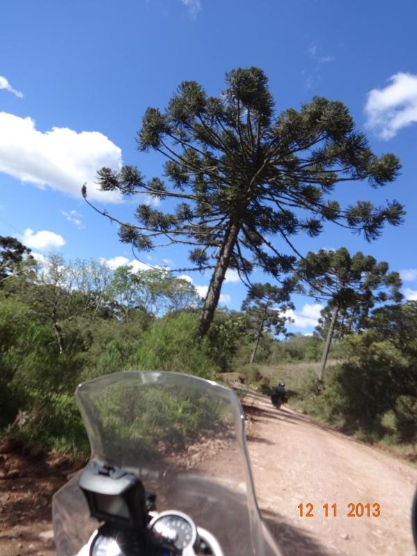 a caminho do cannion Itambezinho em Cambara da Sul (RS)