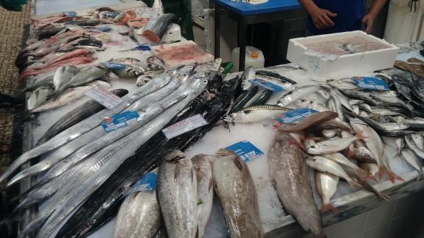 Mercado do Livramento em Setubal